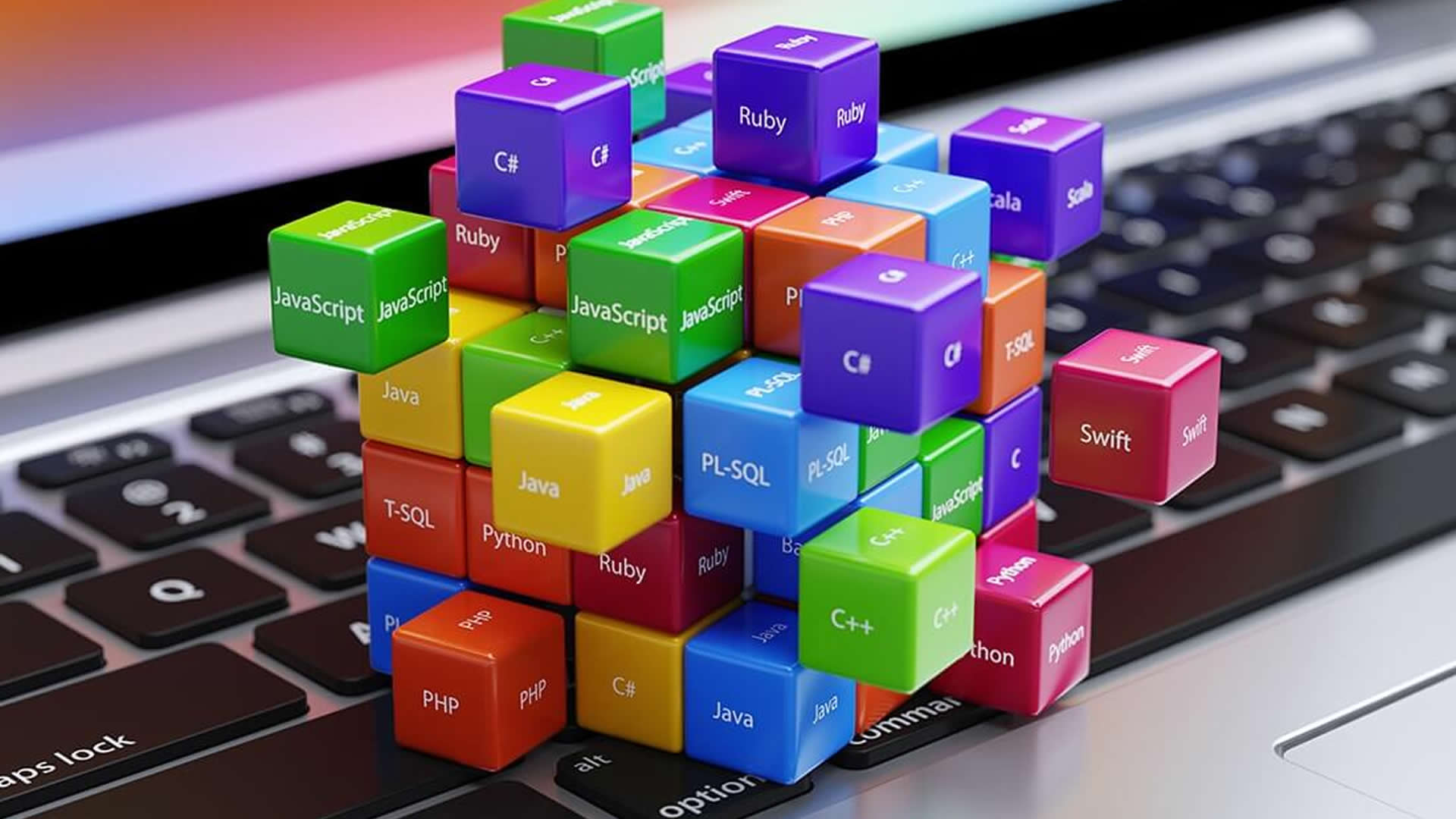 Tailor-made Software Solutions